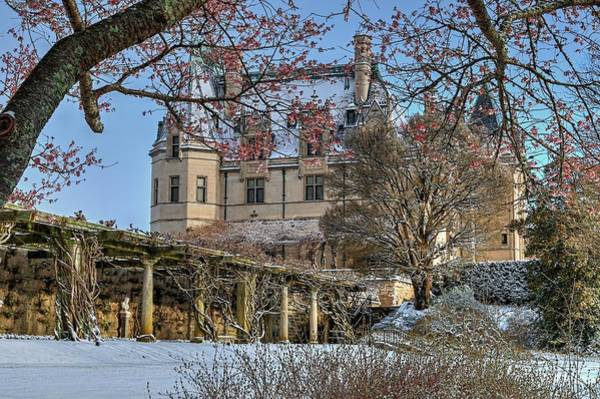 Photograph - Biltmore Through The Cherry Tree by Carol Montoya