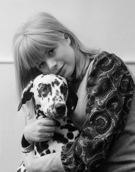 Dalmatian Dog Photograph - Bingley And Faithfull by John Pratt