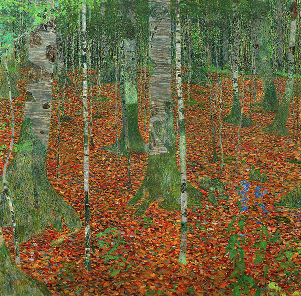 Wall Art - Painting - Birch Forest, 1903 by Gustav Klimt