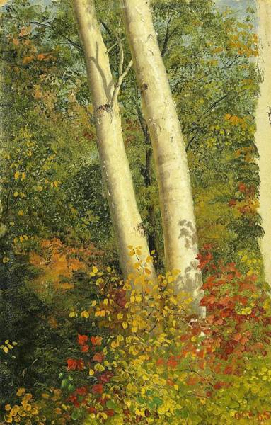 Wall Art - Painting - Birch Trees In Autumn - Digital Remastered Edition by Frederic Edwin Church