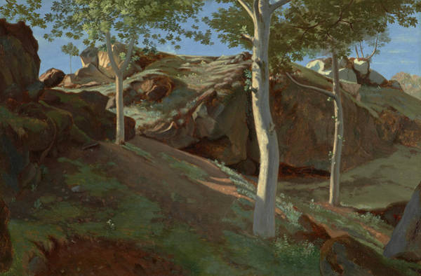 Wall Art - Painting - Birch Trees On A Rocky Incline, Fontainebleu by Achille Etna Michallon