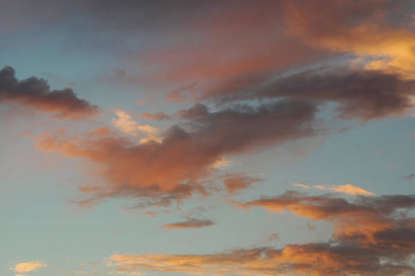 Photograph - Bird Clouds by Kathleen Gauthier