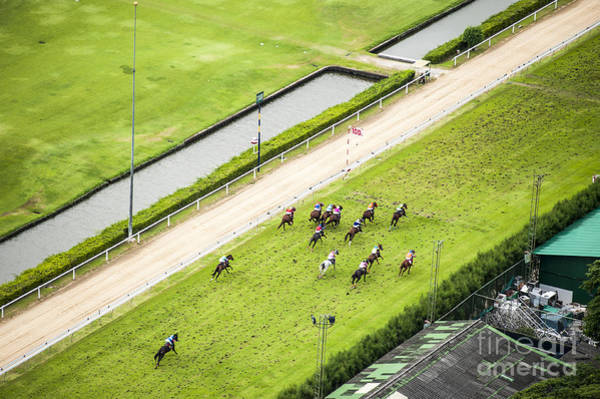 Wall Art - Photograph - Bird Eyes View Horse Racing by J.wootthisak