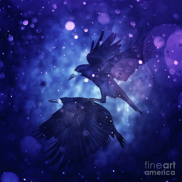 Wall Art - Digital Art - Bird Kingdom  3 by Johan Lilja
