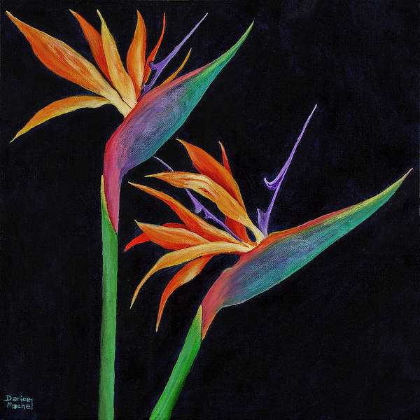 Painting - Bird Of Paradise 1 by Darice Machel McGuire