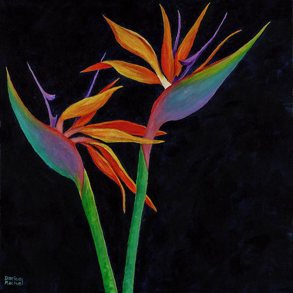 Painting - Bird Of Paradise 2 by Darice Machel McGuire