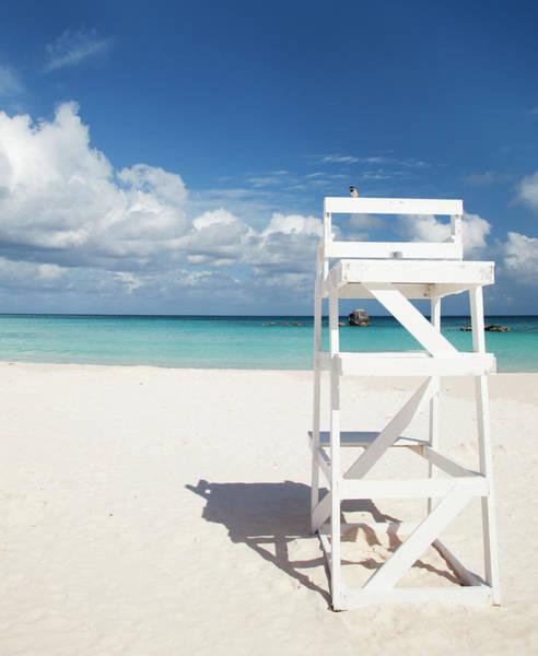 Bermuda Photograph - Bird On A Lifeguard Chair, Horseshoe by Elisabeth Pollaert Smith