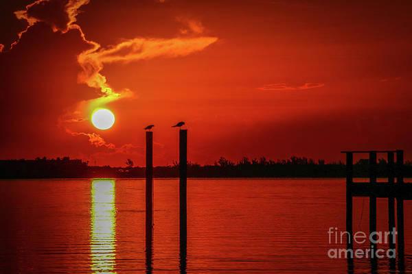 Photograph - Bird On A Pole Sunrise by Tom Claud