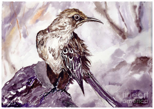 Wall Art - Painting - Bird On The Rock by Suzann Sines