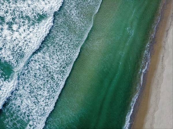Photograph - Bird 's Eye View by Eric Full