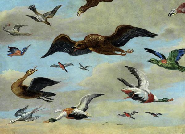 Wall Art - Painting - Bird Studies On Blue Sky by Jan van Kessel