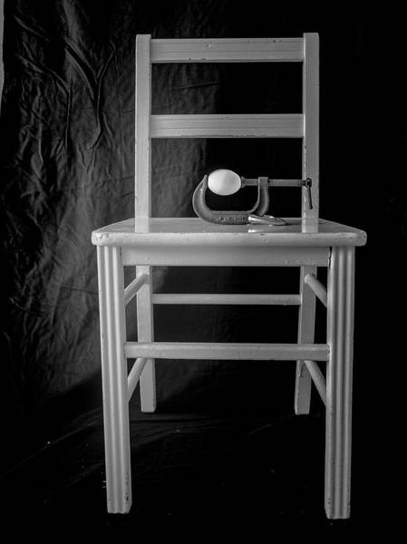 Photograph - Bird / The Chair Project by Dutch Bieber