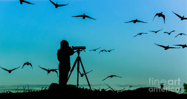Wall Art - Photograph - Bird Watcher Silhouette by Erkki Alvenmod