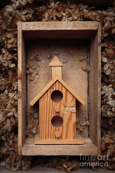 Photograph - Birdhouse Still Life by Edward Fielding