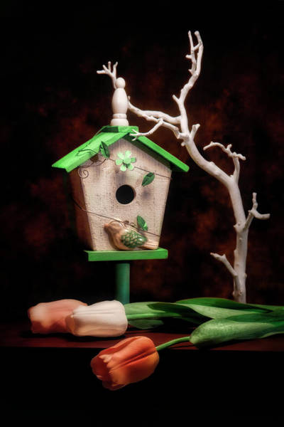 Bird House Photograph - Birdhouse With Tulips by Tom Mc Nemar