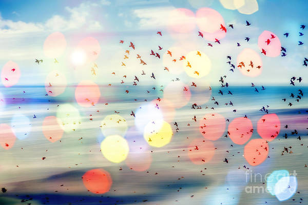 Aspiration Wall Art - Photograph - Birds Flying And Abstract Sky ,spring by Babaroga