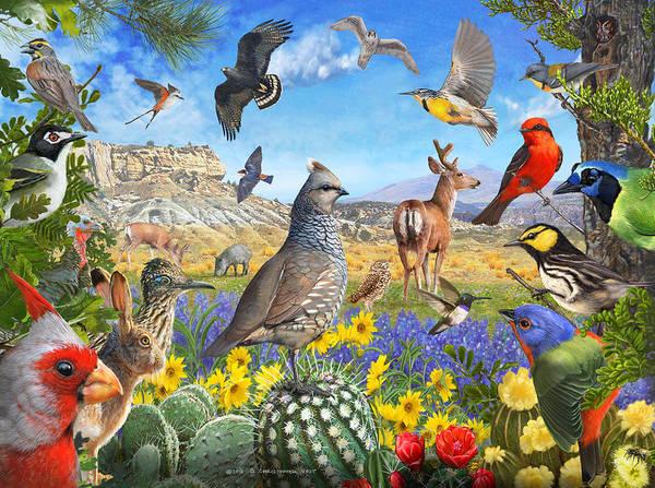 Wall Art - Photograph - Birds Of Arid Texas by R christopher Vest