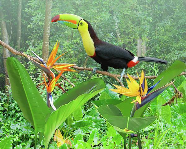 Wall Art - Digital Art - Birds Of Paradise by Spadecaller