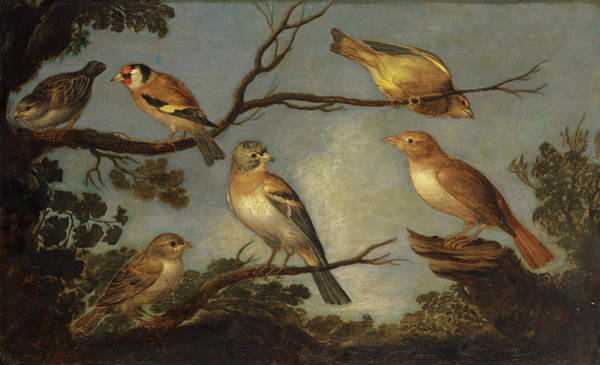 Wall Art - Painting - Birds On The Branches Of A Tree by Jan van Kessel