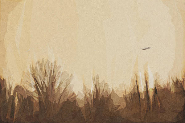 Wall Art - Digital Art - Birds Swans Fly Landscape Twilight by Draw Sly