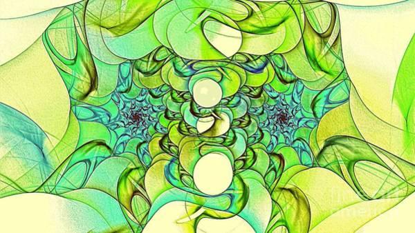 Digital Art - Birgla by Doug Morgan