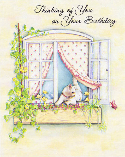 Photograph - Birthday Cat In Window by Marilyn Hunt