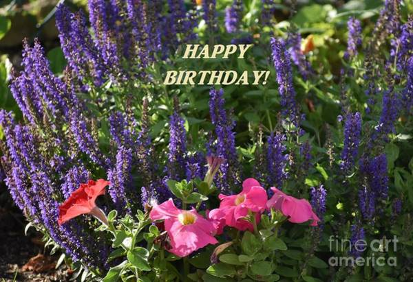 Photograph - Birthday Flowers by Christina Verdgeline