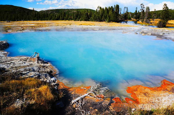Hot Spring Wall Art - Photograph - Biscuit Basin,yellowstone National by Wizard8492