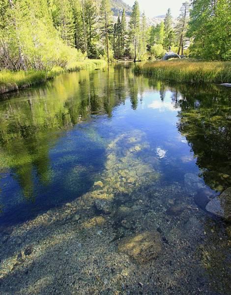 Photograph - Bishop Creek by Sean Sarsfield