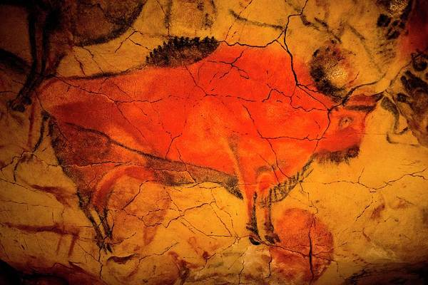 Up North Painting - Bison Painting In Altamira Caves by Unknown