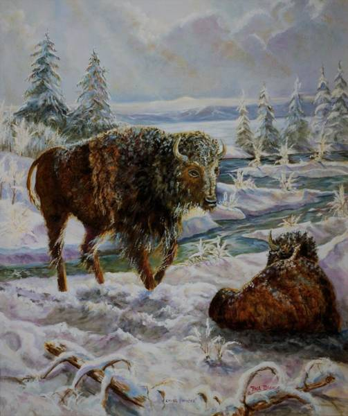 Painting - Bison In Yellowstone In The Winter by Philip Bracco