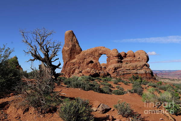 Wall Art - Photograph -  Bizarre Rockformation Of Turret Arch by Christiane Schulze Art And Photography