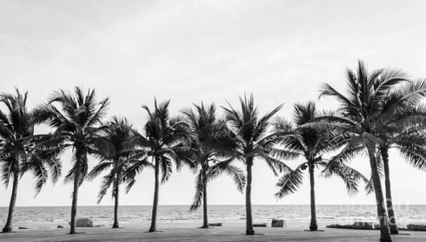 Black & White View Of Beautiful Beach Art Print