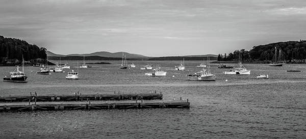 Photograph - Black And White Bar Harbor Boats by Dan Sproul