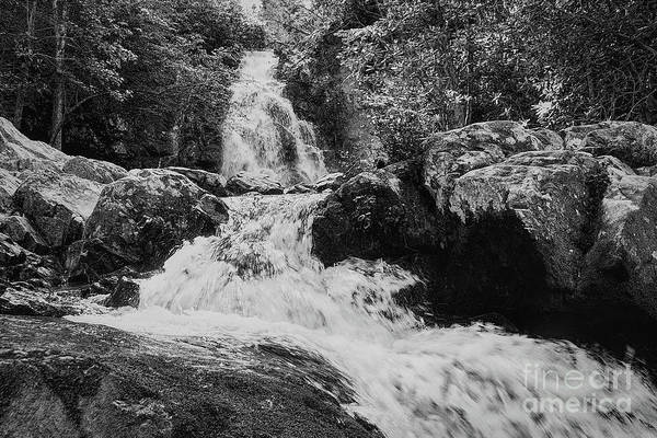 Photograph - Black And White Falls by Phil Perkins