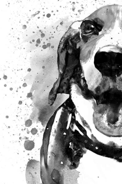 Wall Art - Painting - Black And White Half Faced Beagle  by Marian Voicu