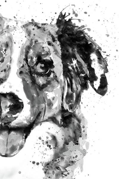 Wall Art - Painting - Black And White Half Faced Border Collie by Marian Voicu