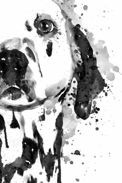 Wall Art - Painting - Black And White Half Faced Dalmatian Dog by Marian Voicu