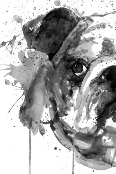 Wall Art - Painting - Black And White Half Faced English Bulldog by Marian Voicu
