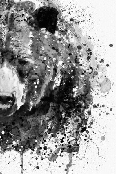 Wall Art - Painting - Black And White Half Faced Grizzly Bear by Marian Voicu