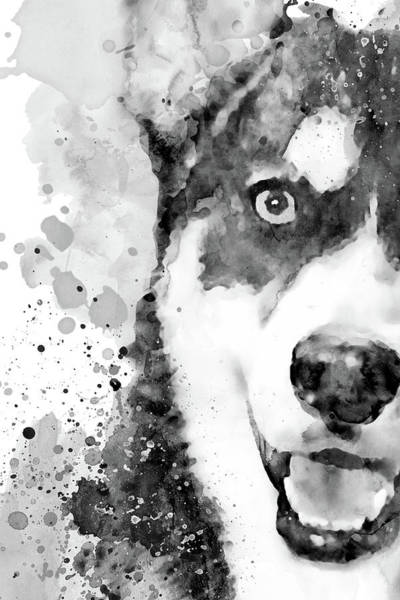 Wall Art - Painting - Black And White Half Faced Husky Dog by Marian Voicu