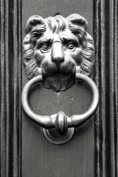 Photograph - Black And White Lion Knocker by Don Johnson