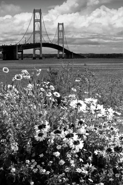 Photograph - Black And White Of Blooming Flowers By The Bridge At The Straits by Randall Nyhof