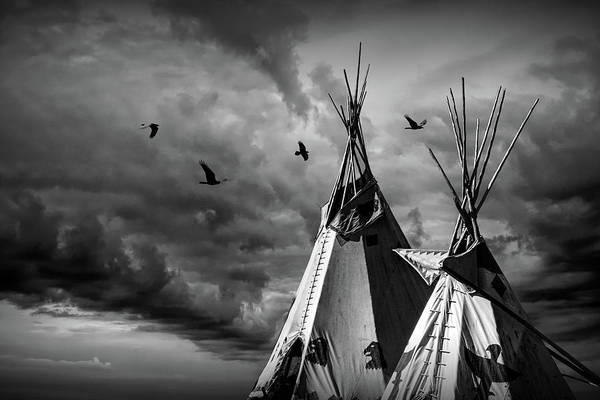 Photograph - Black And White Of The Home Of The Children Of The Large Beaked Bird by Randall Nyhof