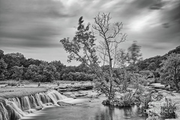 Photograph - Black And White Photograph Of Link Falls At Bull Creek District Park Greenbelt - Austin Texas by Silvio Ligutti
