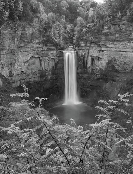 Photograph - Black And White Taughannock Falls by Dan Sproul