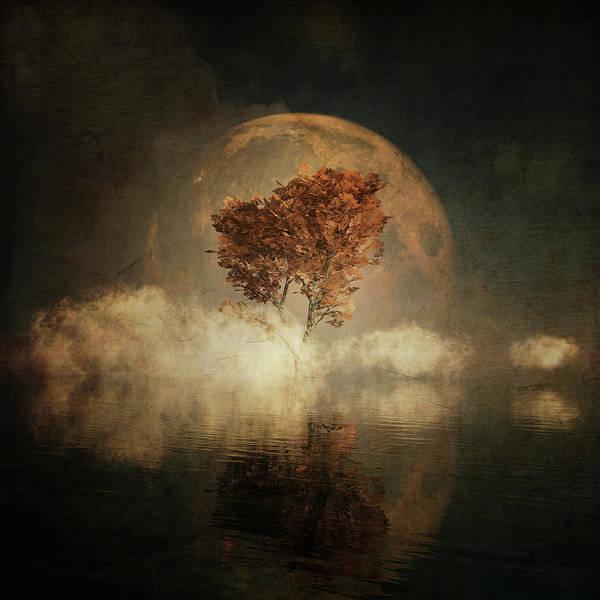 Digital Art - Black Ash With Full Moon In The Mist by Jan Keteleer