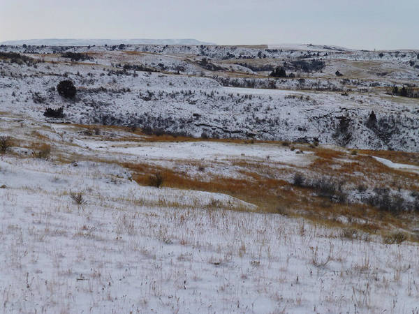 Photograph - Black Butte January Prairie by Cris Fulton
