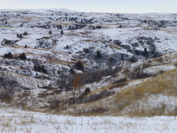 Photograph - Black Butte Prairie Winter by Cris Fulton