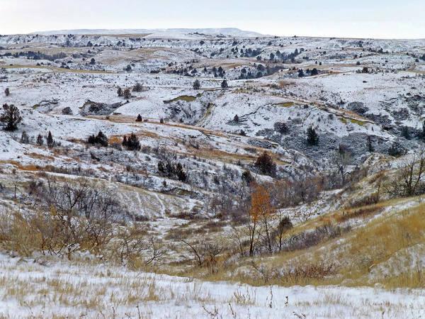 Photograph - Black Butte Winter's Reverie by Cris Fulton